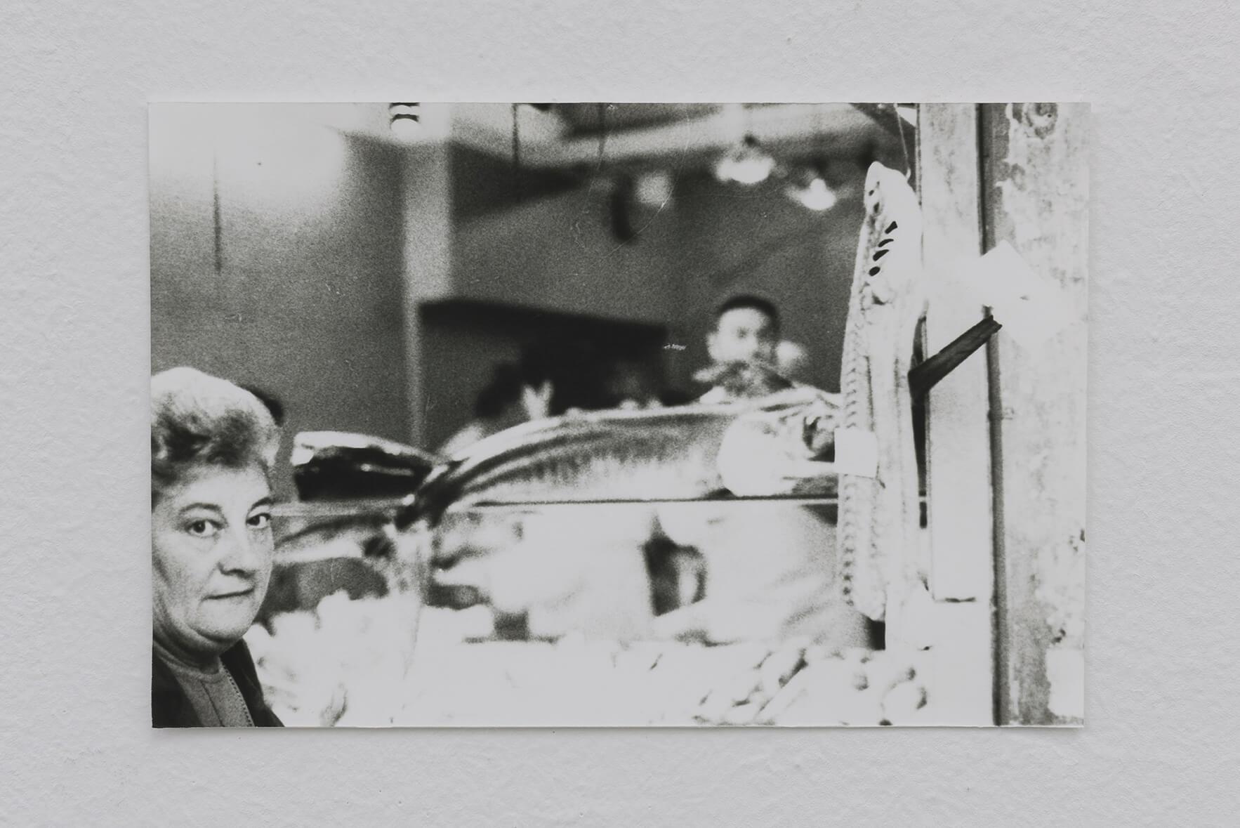 Kiemenspalten (Orificios branquiales), 1996-2017 | Zostera & Posidonia | ProjecteSD