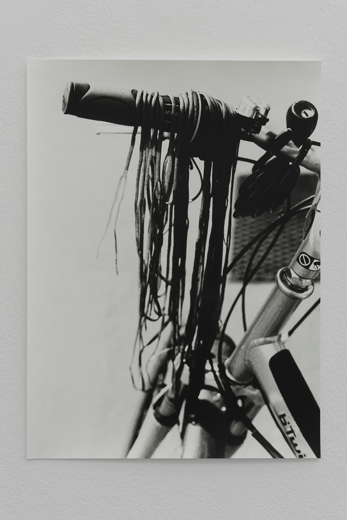 Untitled (Himanthalia / Bycicle), 2017 | Zostera & Posidonia | ProjecteSD