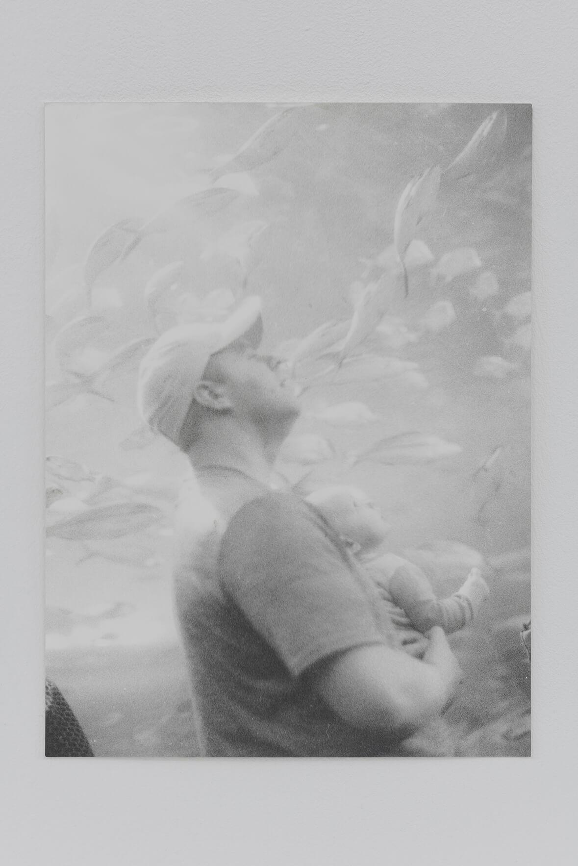 Untitled (Aquarium Toronto), 2015 | Zostera & Posidonia | ProjecteSD