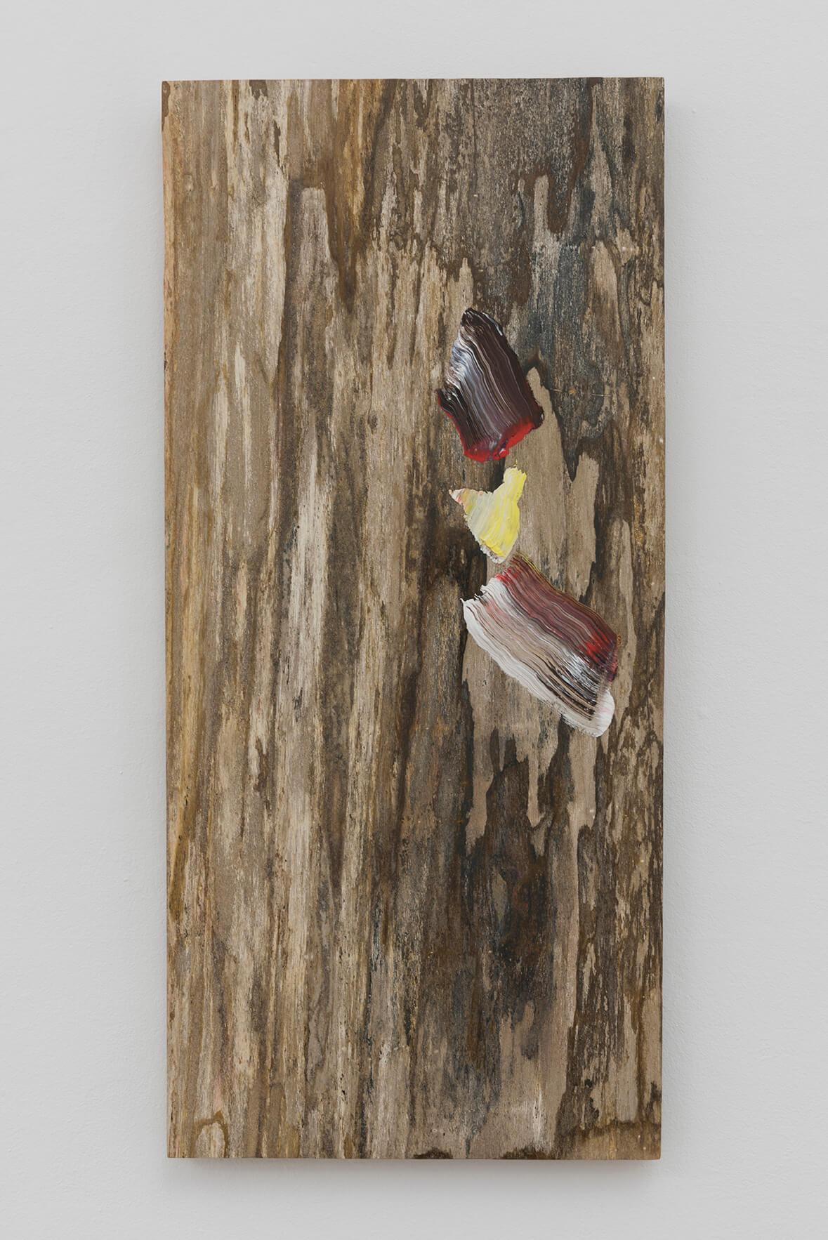 Untitled, 2017 | Pieter Vermeersch | ProjecteSD
