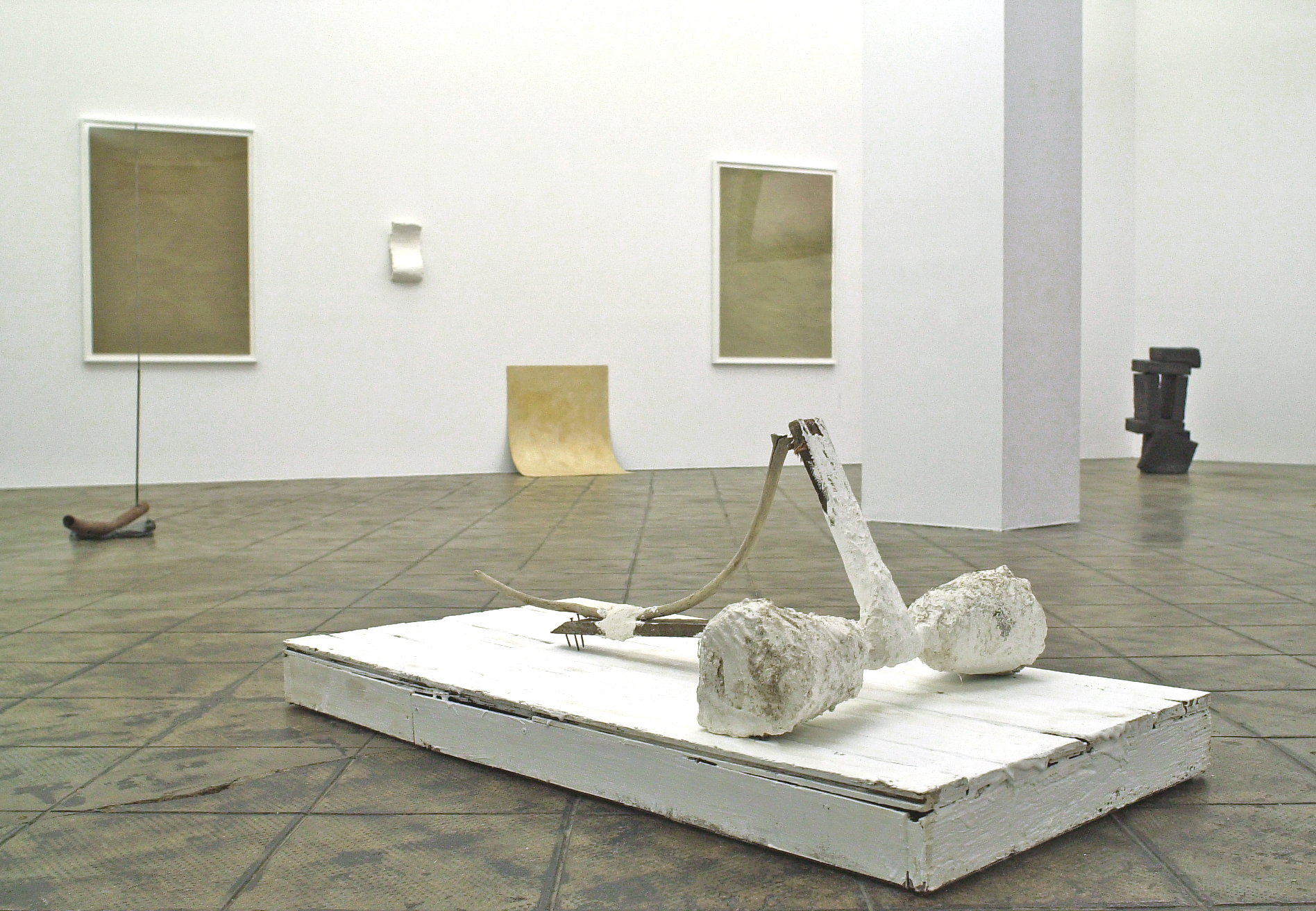 Installation view: Strange Form Of Life, ProjecteSD, Barcelona, 2010 |  | ProjecteSD