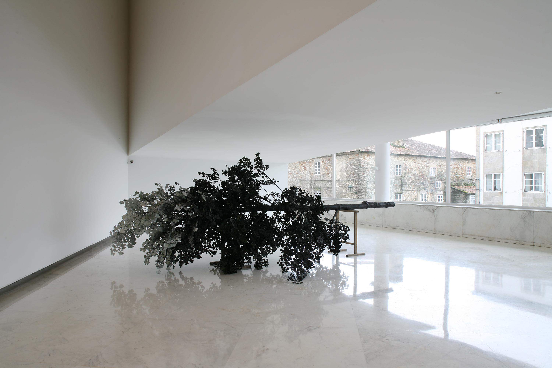 L'arbre, 2005 |  | ProjecteSD