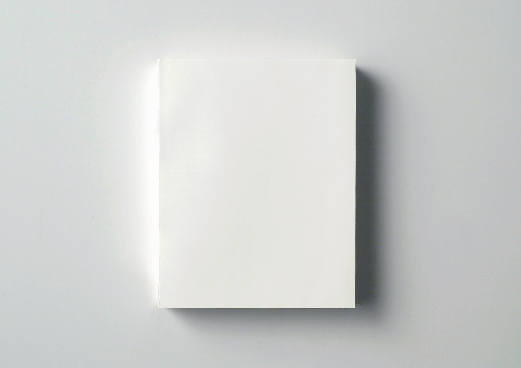 | White Book | ProjecteSD
