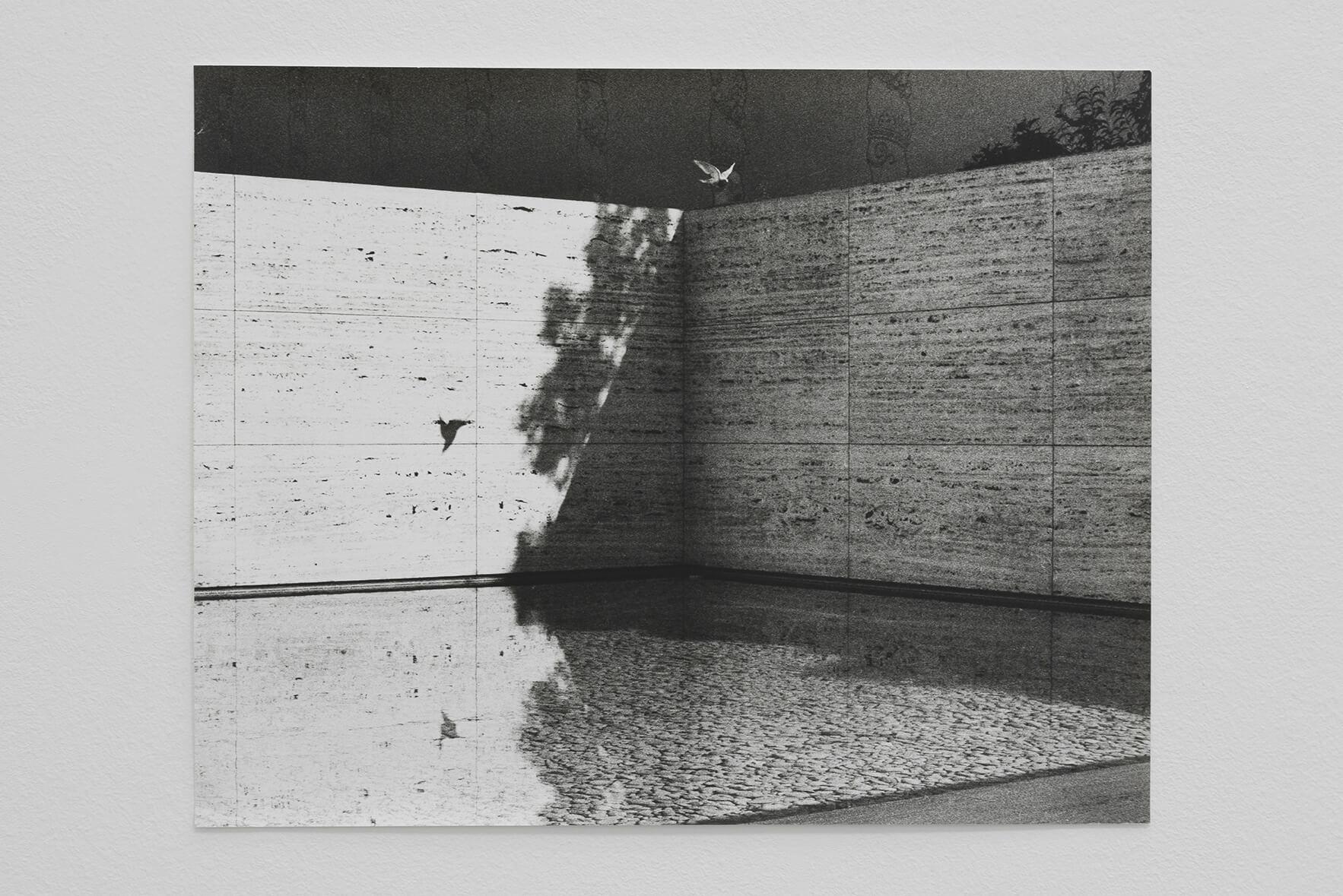 Untitled (Barcelona Pavilion), 2007 |  | ProjecteSD
