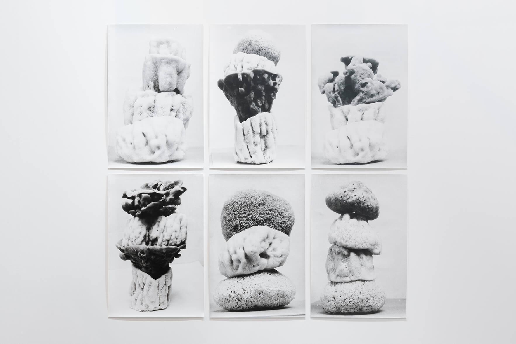 Schwammtürme (Spongetowers),1995-2016 |  | ProjecteSD