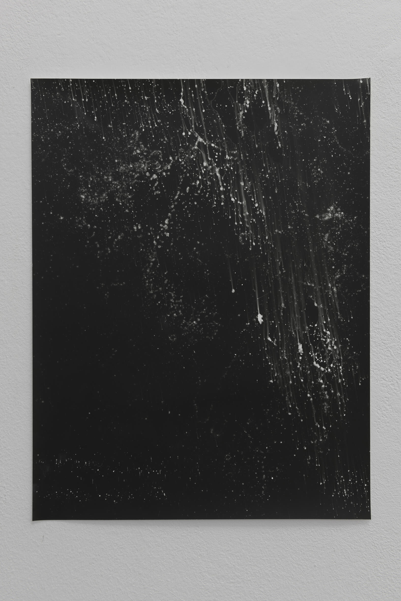 Noctiluca (seawater poured on negative), 2008 |  | ProjecteSD