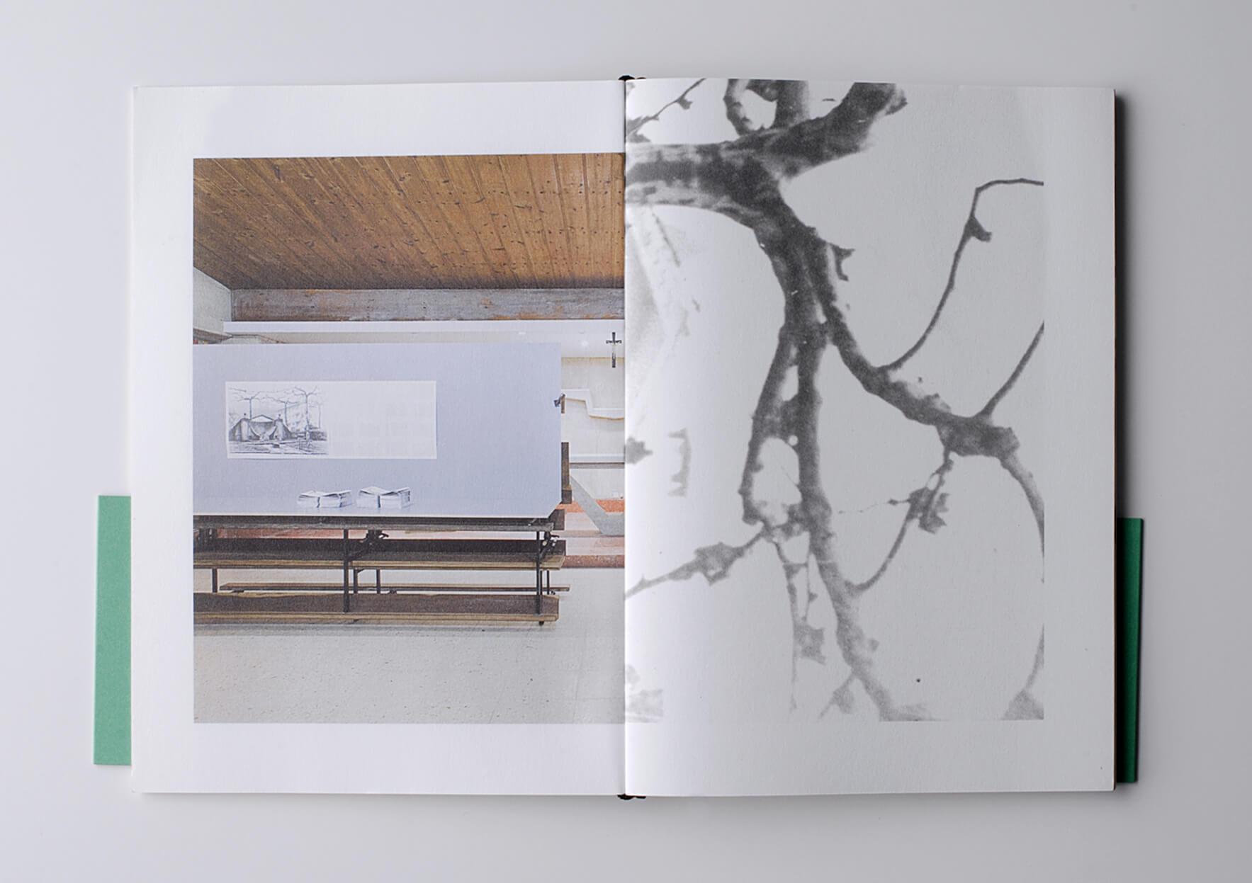 | Pelar un tronco. Composición y arreglos | ProjecteSD