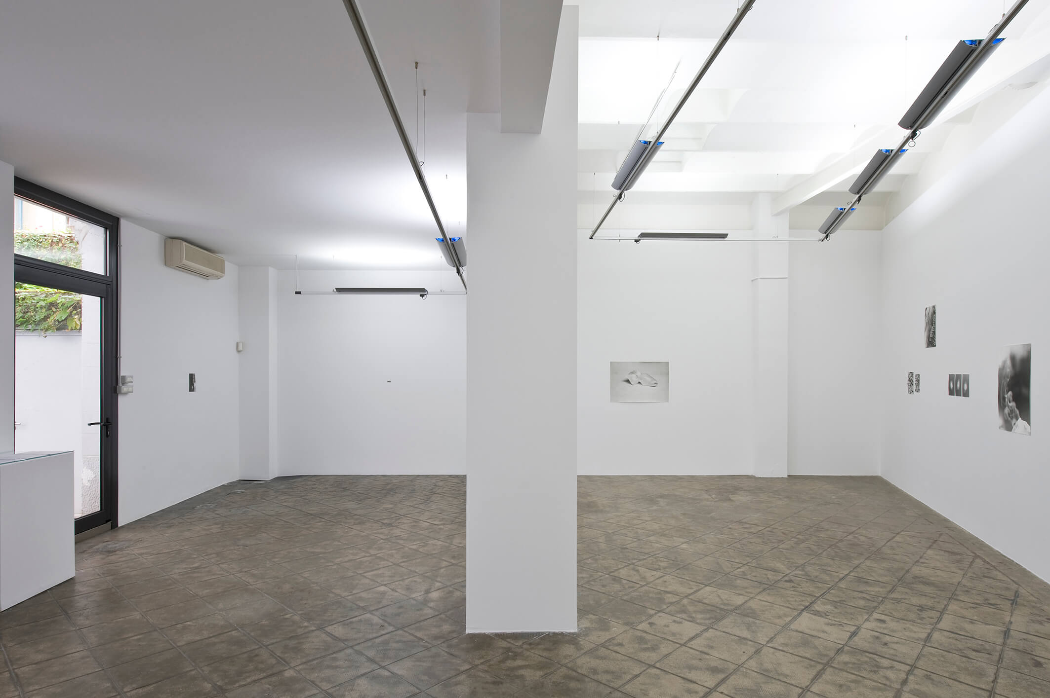 Installation view: Jochen Lempert, Projecte SD, Barcelona, 2014 | Jochen Lempert | ProjecteSD