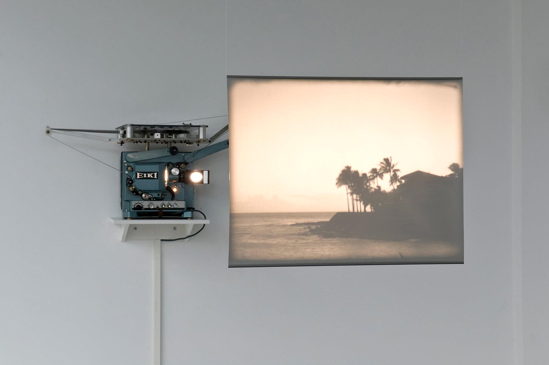 The Garden Island, 2012 | El Gran Cercle | ProjecteSD