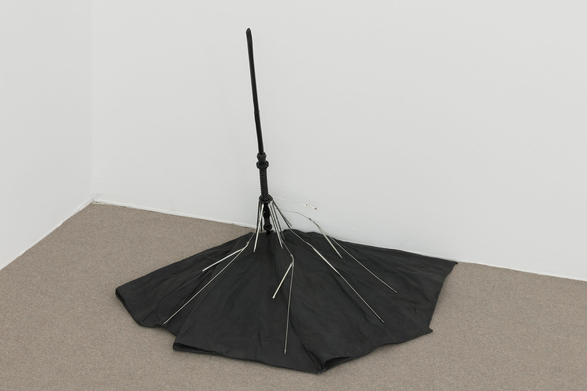 Precipitation (black), 2019 | America | ProjecteSD