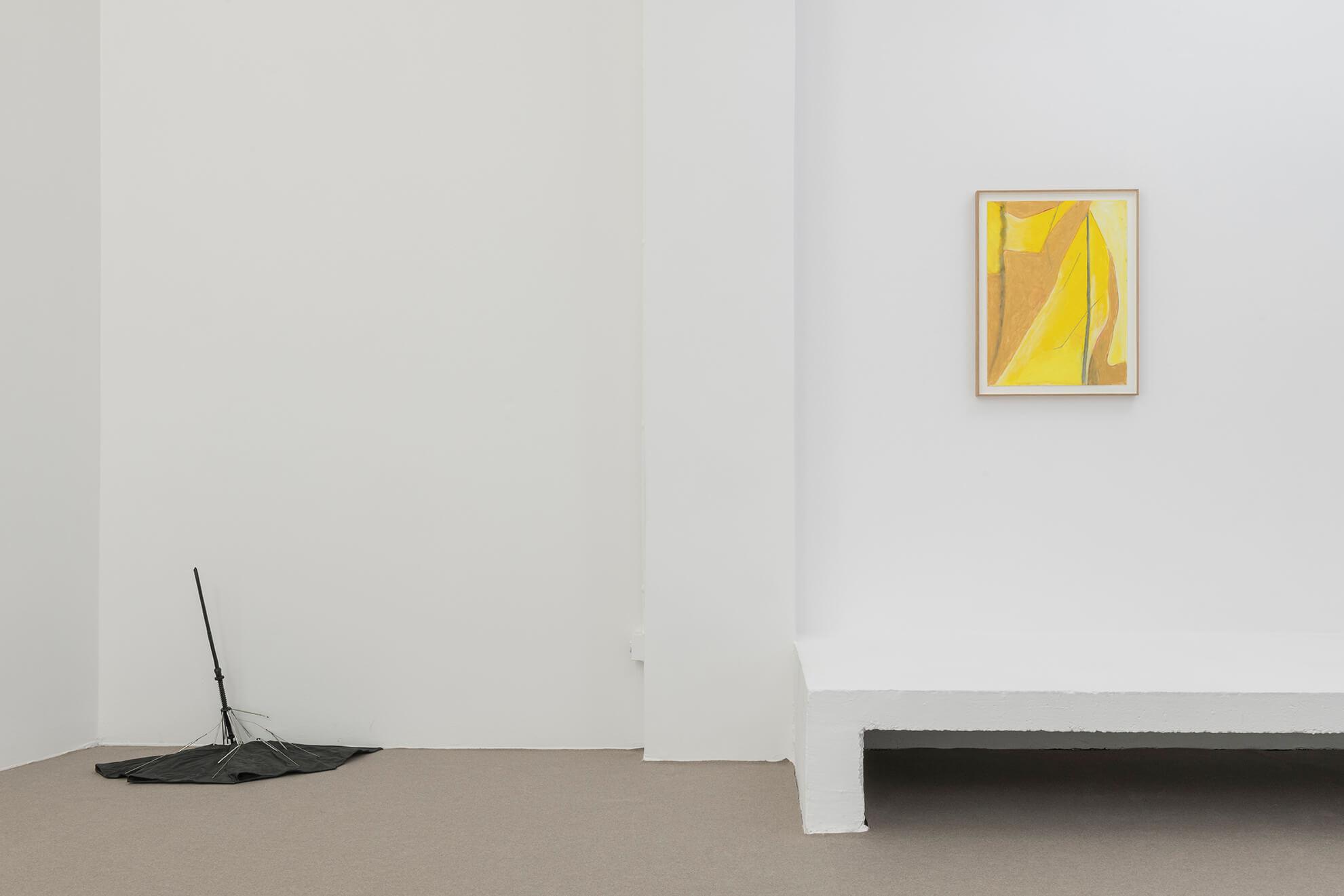 Installation view: Guillaume Leblon. America, ProjecteSD | FIAC 2019 | ProjecteSD