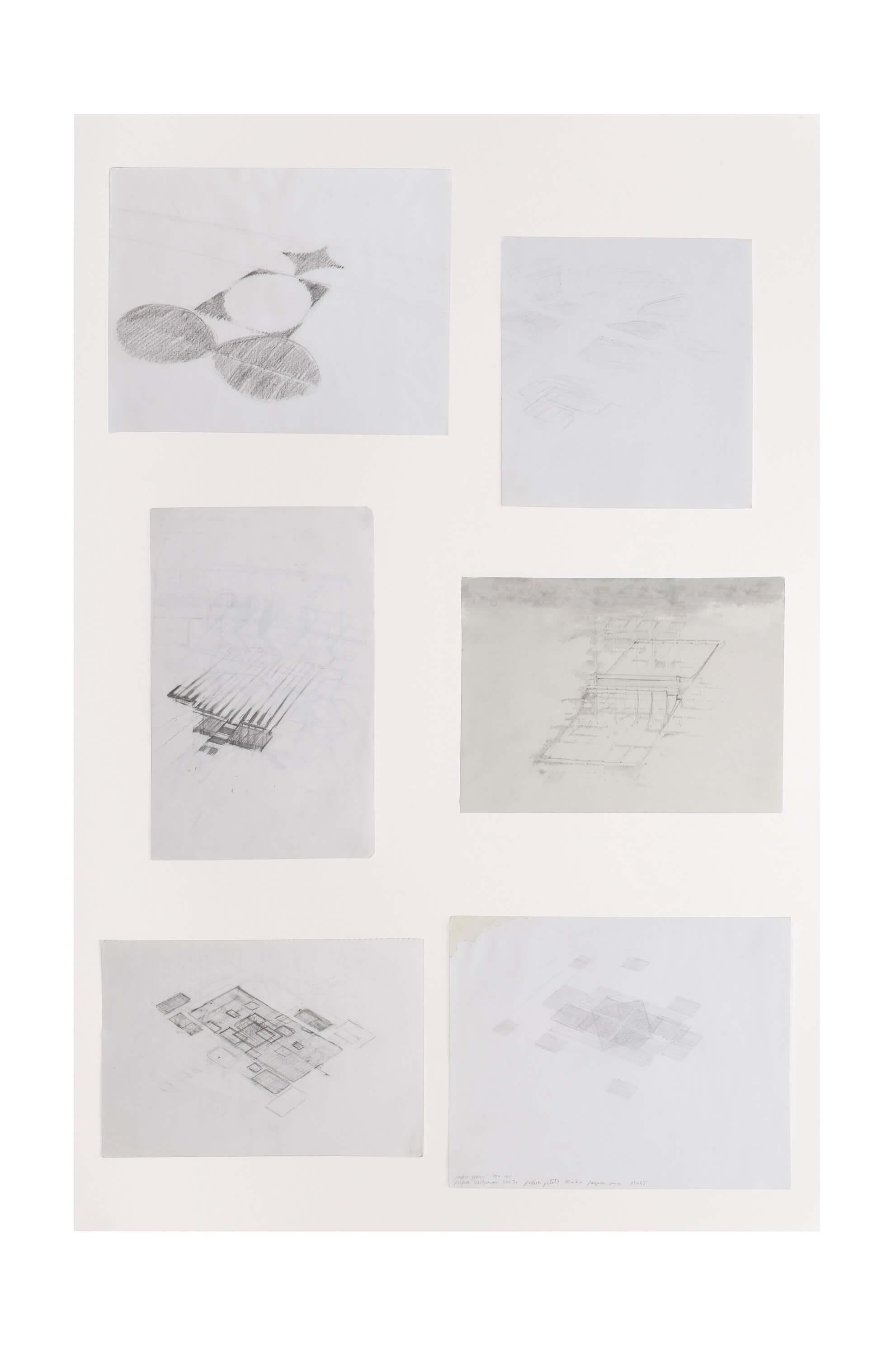 Extensions, 2012 | El Gran Cercle | ProjecteSD
