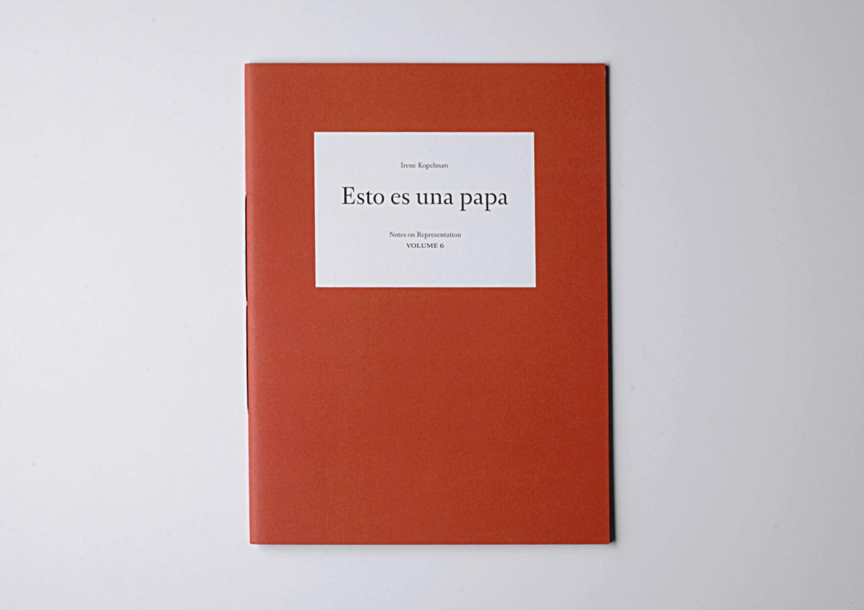 | Esto es una papa. Notes on Representation V.6 | ProjecteSD