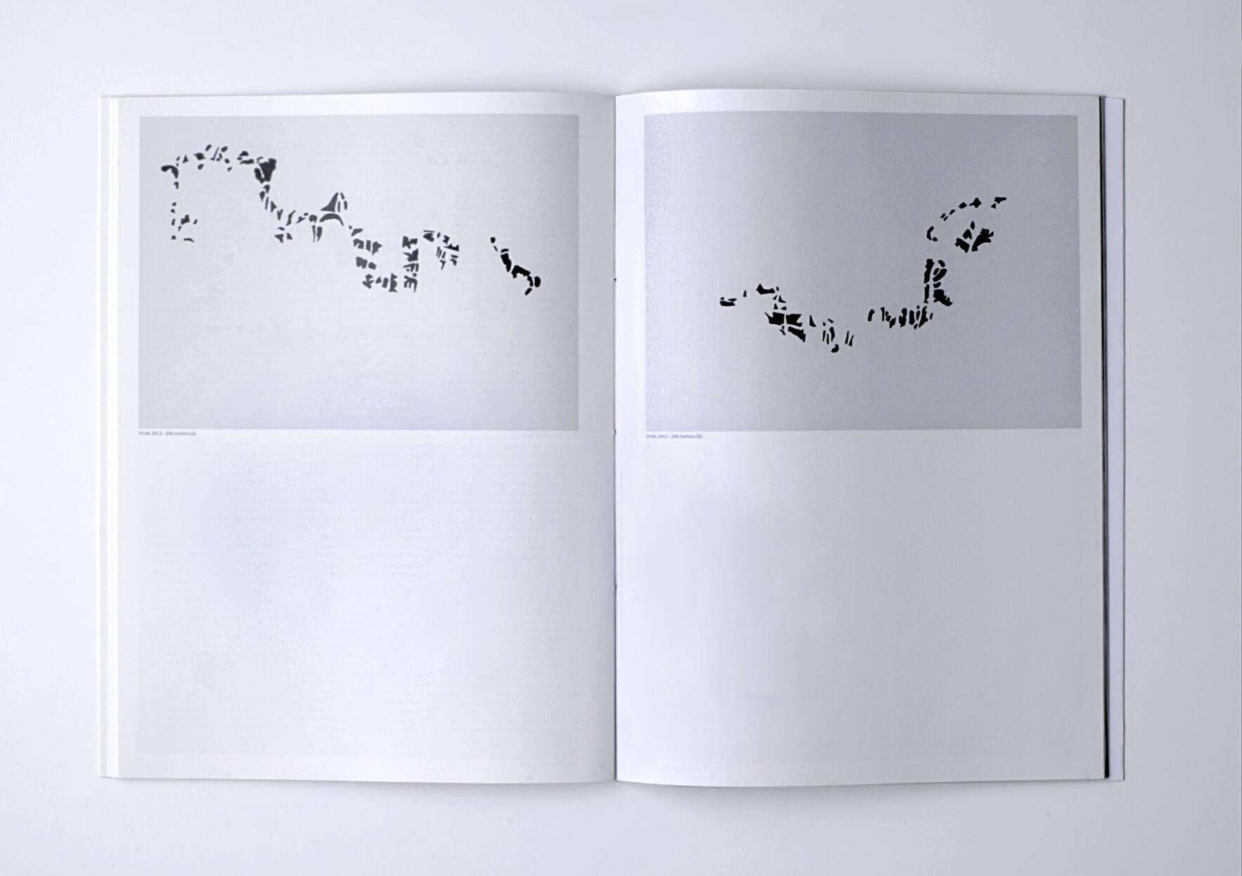 Irene Kopelman The Exact Opposite of Distance. Notes on Representation V.5, 2014 28 x 21 cm, 72 p. Ed. Roma Publications. Texts in English and Spanish. | Mother | ProjecteSD
