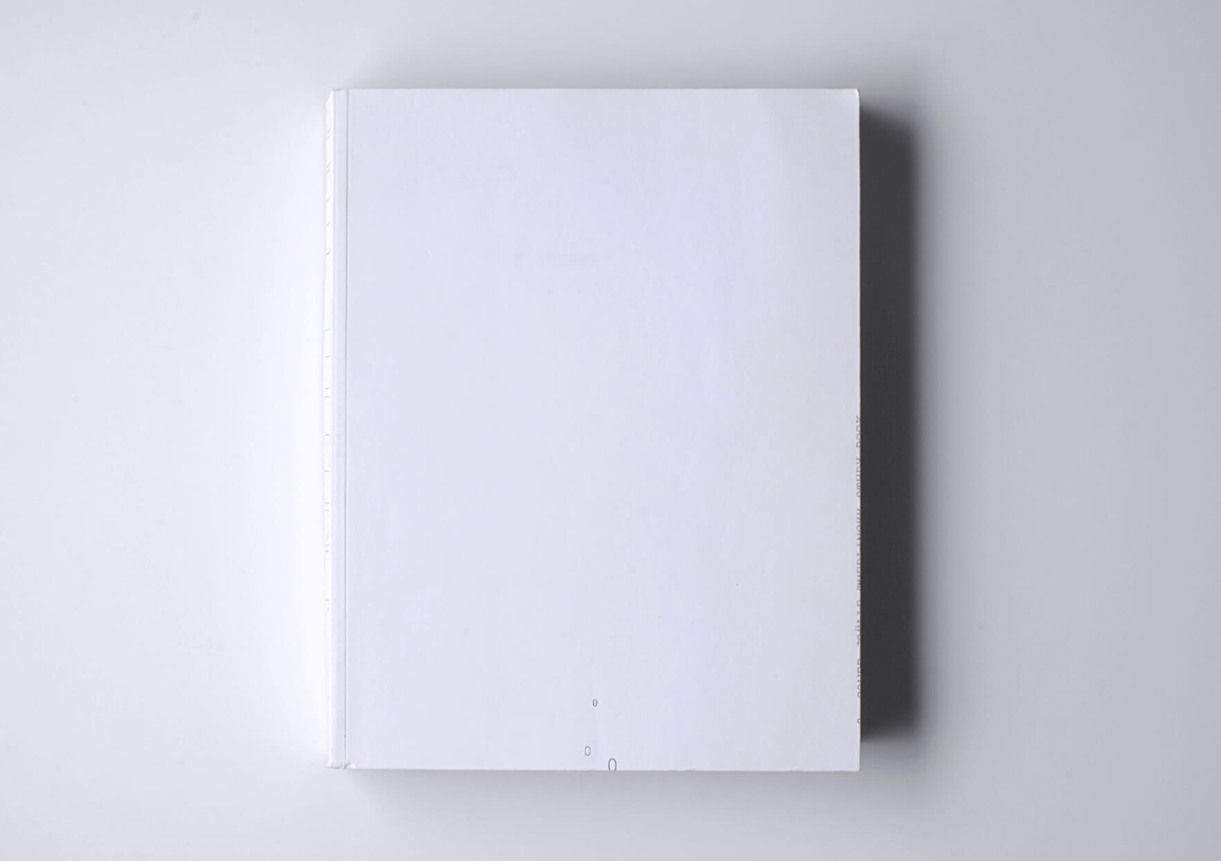 Joëlle Tuerlinckx Study Book (Drawing Papers 59), 2007 21,5 x 27.8 cm, 560 p. Textos en inglés Ed. MER. Paper Kunsthalle, The Drawing Center, and The Renaissance Society at the University of Chicago | Mother | ProjecteSD