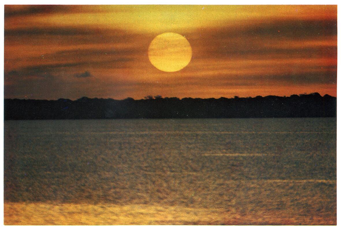 Lago Tefé, 2019 |  | ProjecteSD
