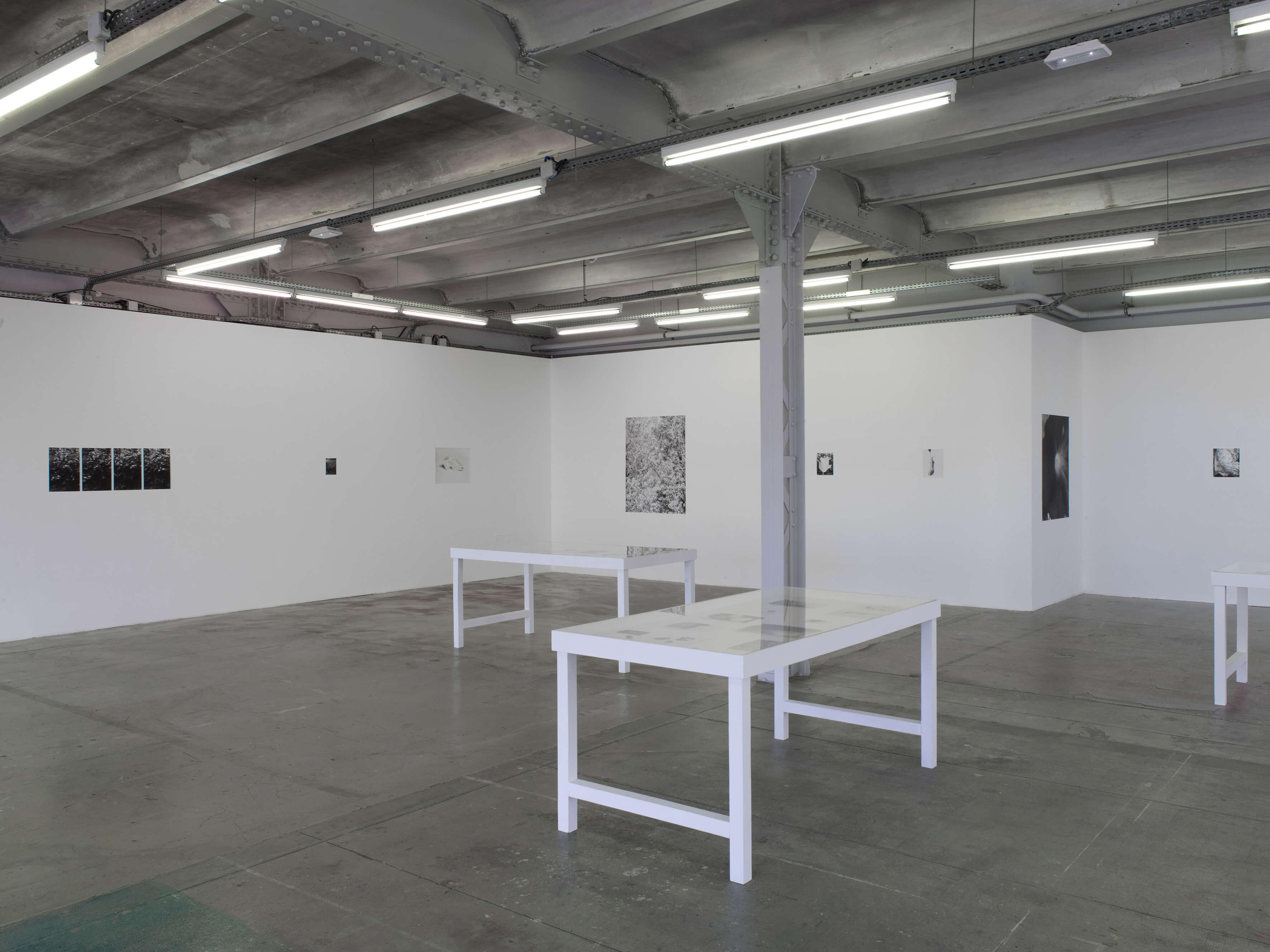 Installation view:Jardin d' Hiver, Centre d'art contemporain d'Ivry – le Crédac, 2020 |  | ProjecteSD