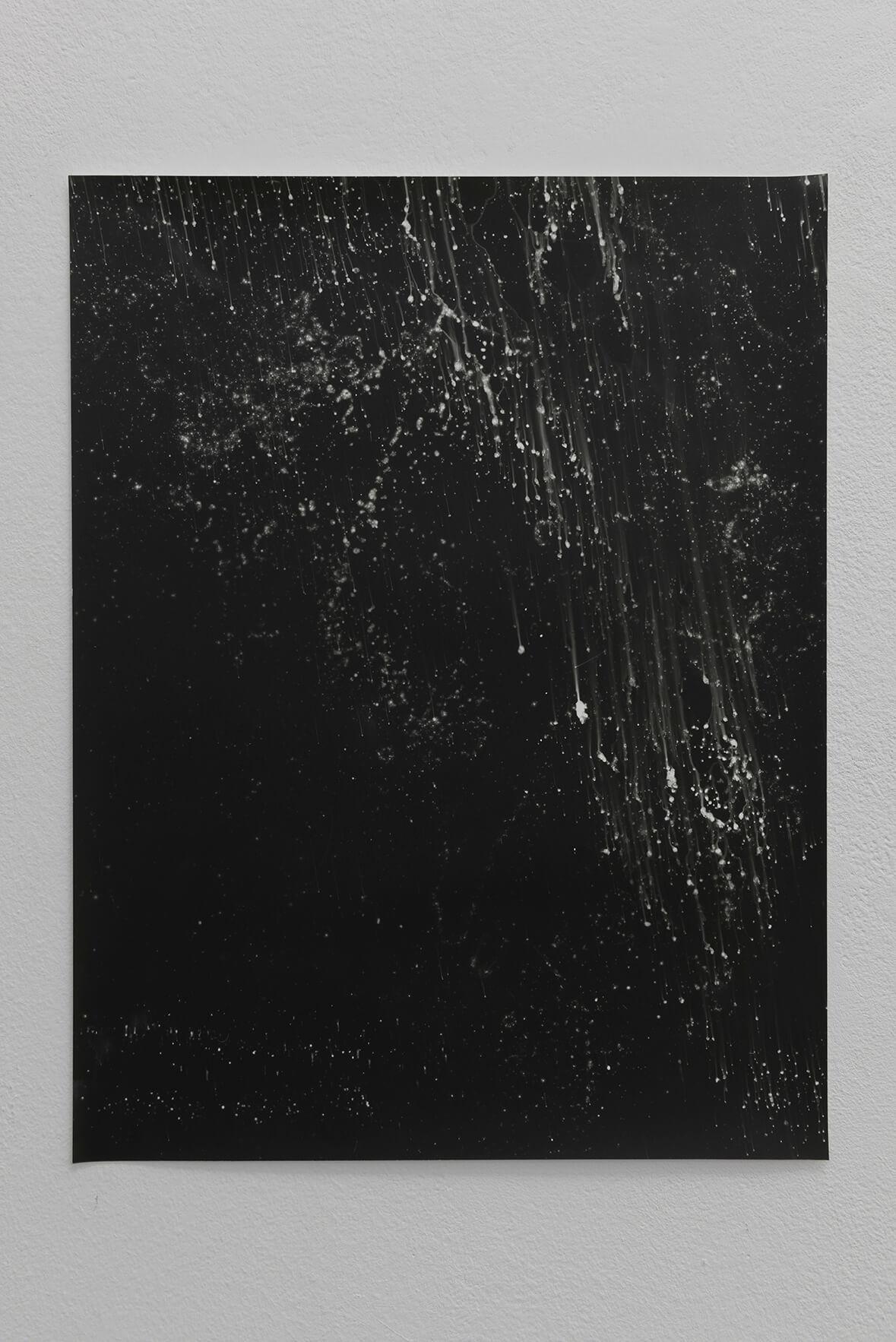 Noctiluca (seawater poured on negative), 2008 | Zostera & Posidonia | ProjecteSD