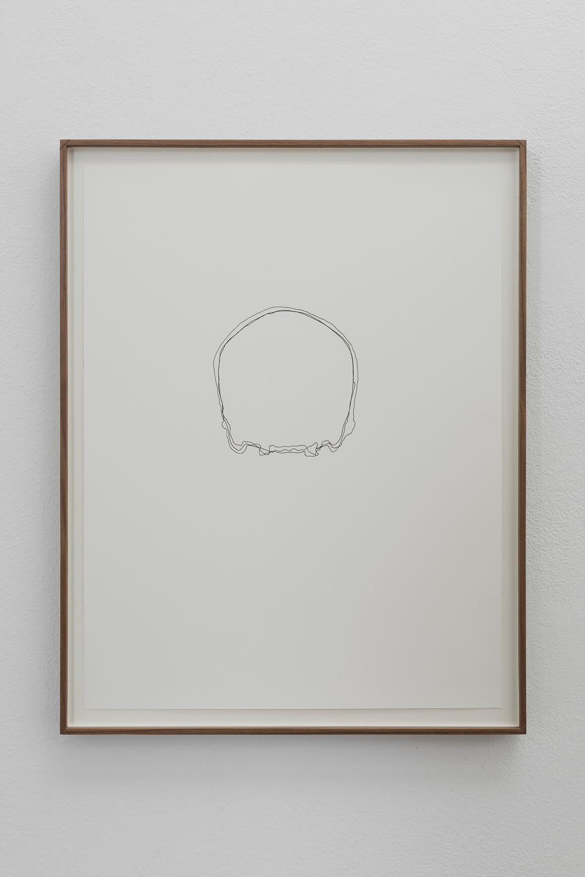 Crania, 2016 | Concavitat | ProjecteSD