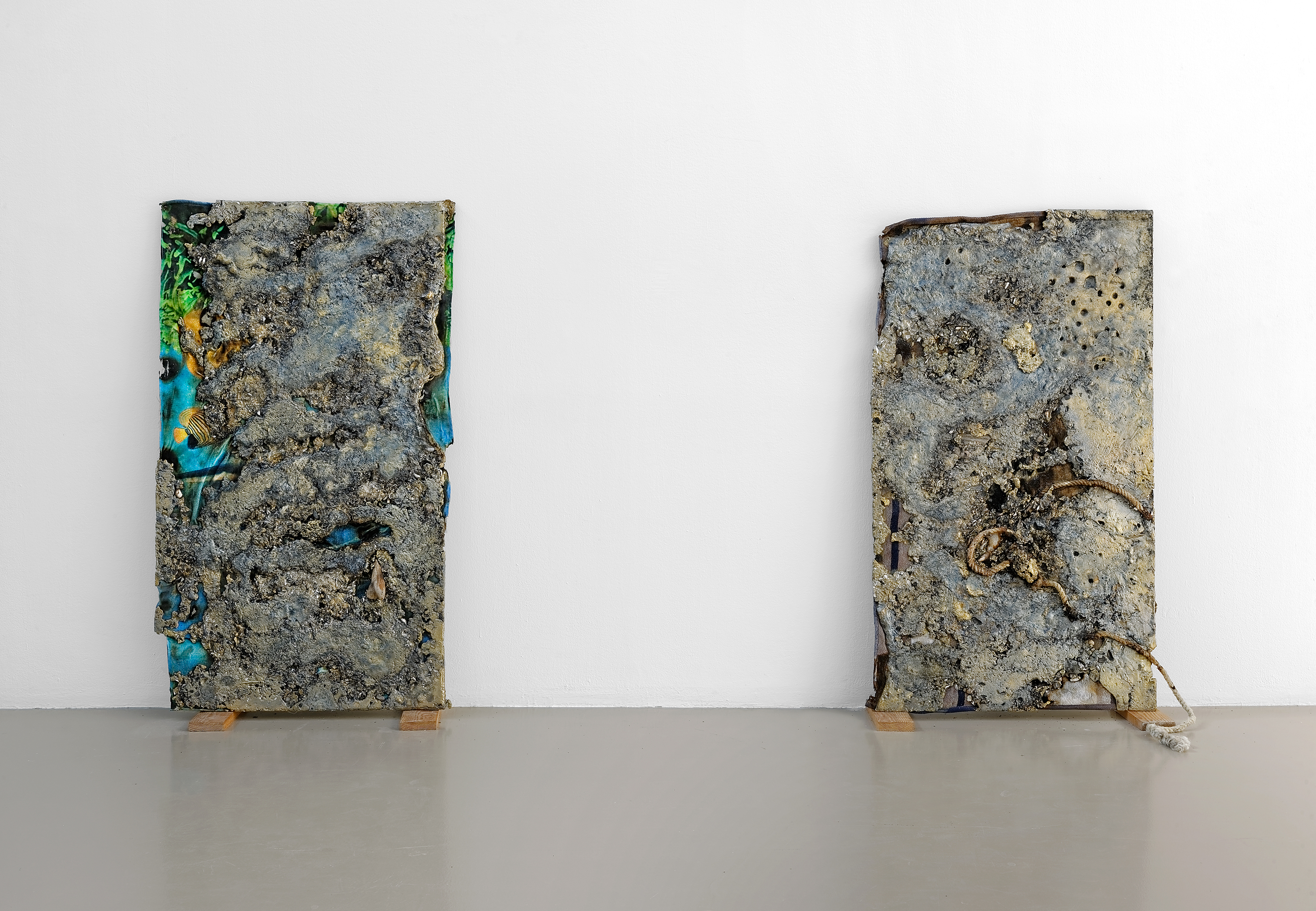 Sea Brass (Towel Blue and Fish), 2012 /Sea Brass (Rope), 2012 |  | ProjecteSD