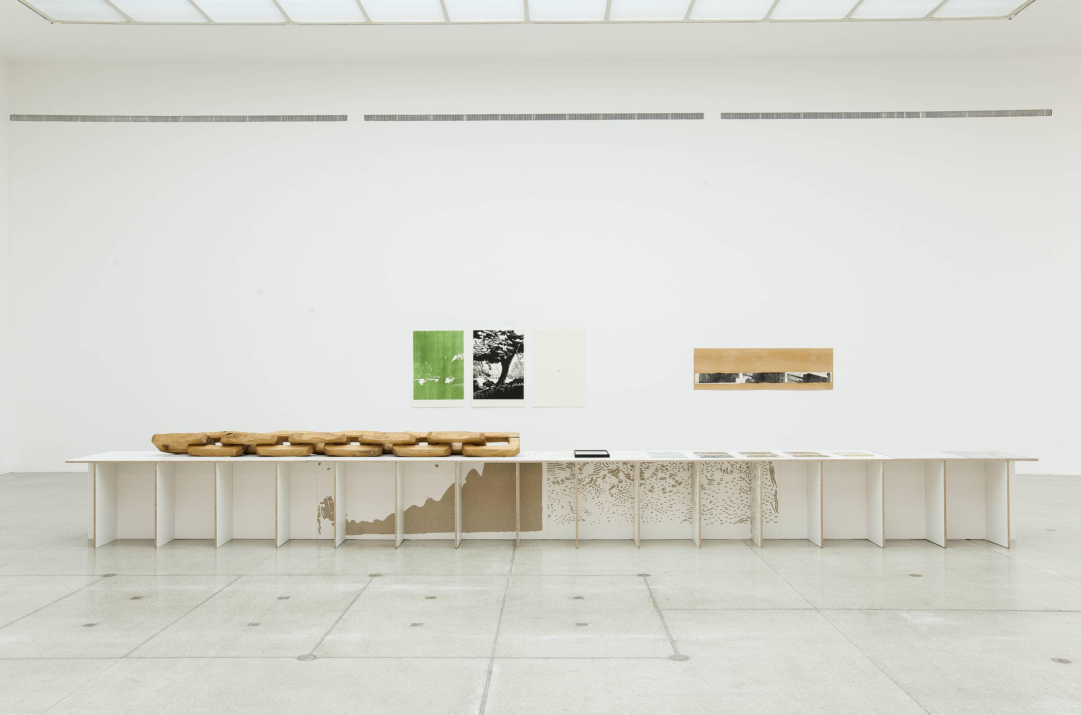 Installation view: A Singular Form, 2016. Secession, Vienna |  | ProjecteSD