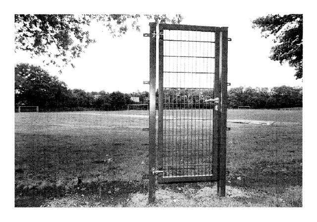 Ungeklärte Fälle / Unresolved cases. Archiv Peter Piller, 2000 – 2006 |  | ProjecteSD