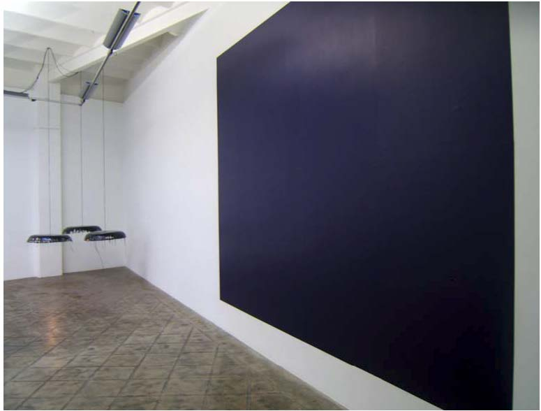Installation view: Only Pictures are colourful, ProjecteSD, 2005 |  | ProjecteSD