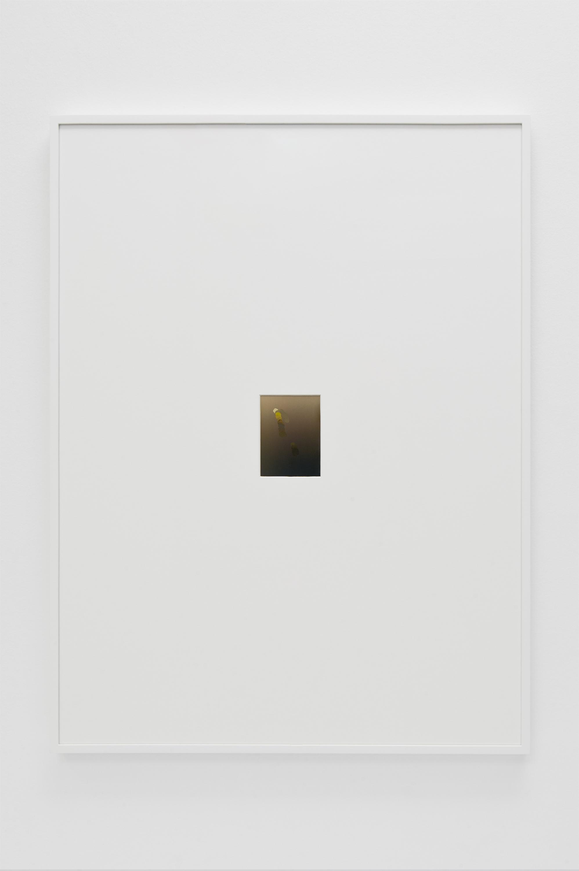 Untitled, 2013 |  | ProjecteSD