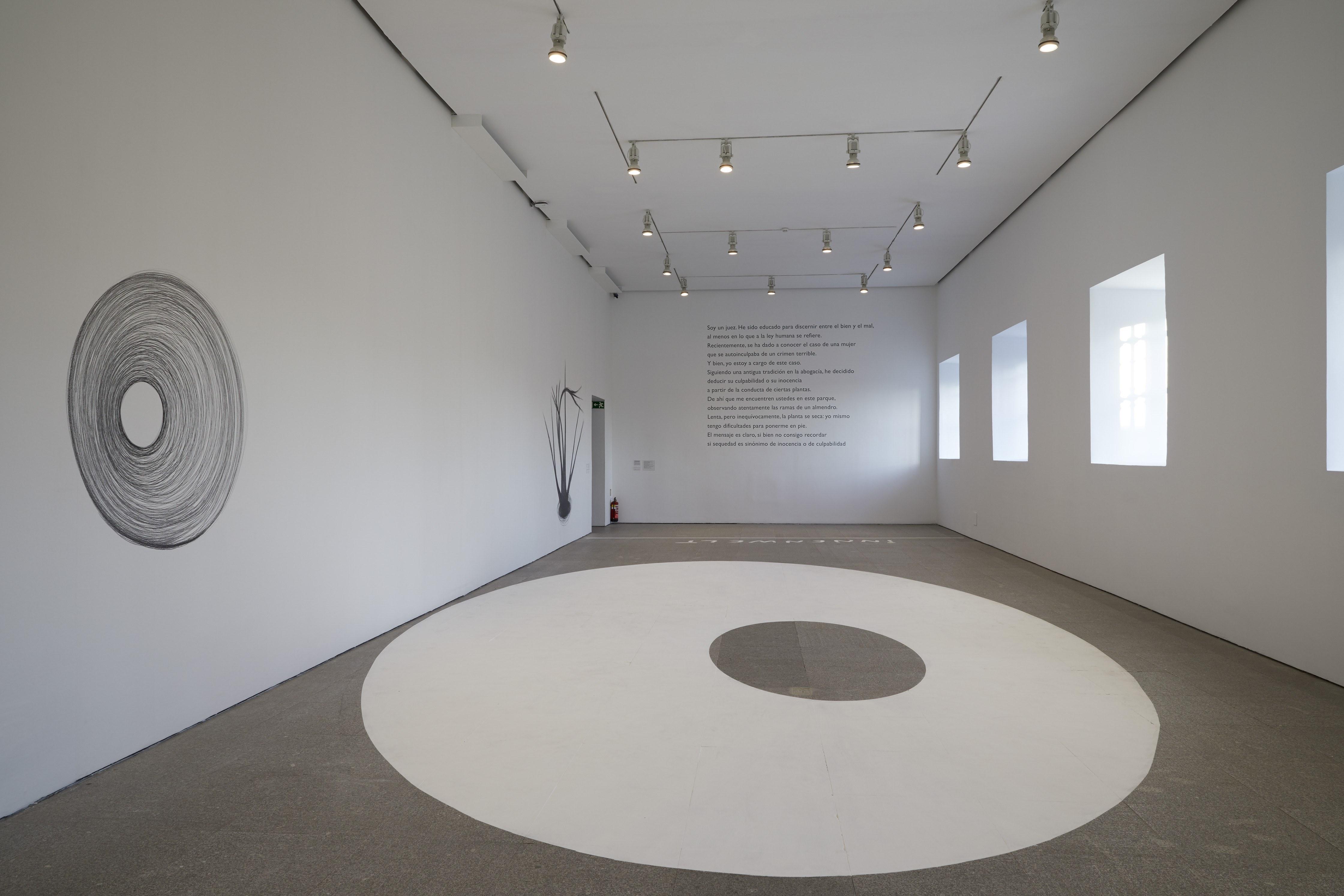Segunda Vez, Museo Nacional Centro de Arte Reina Sofía, Madrid, 2018      ProjecteSD