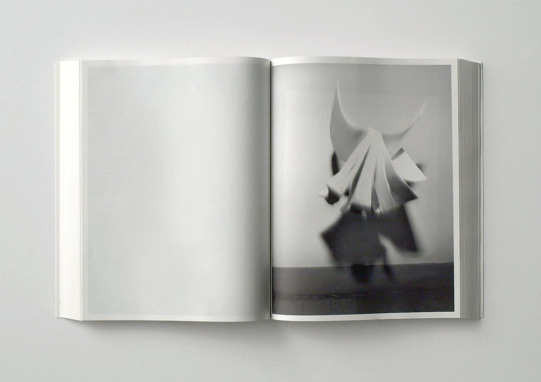 | White Book | ProjecteSD