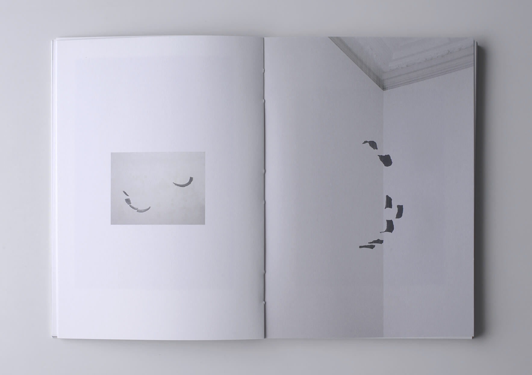 | A segunda Imagem / The Second Image | ProjecteSD