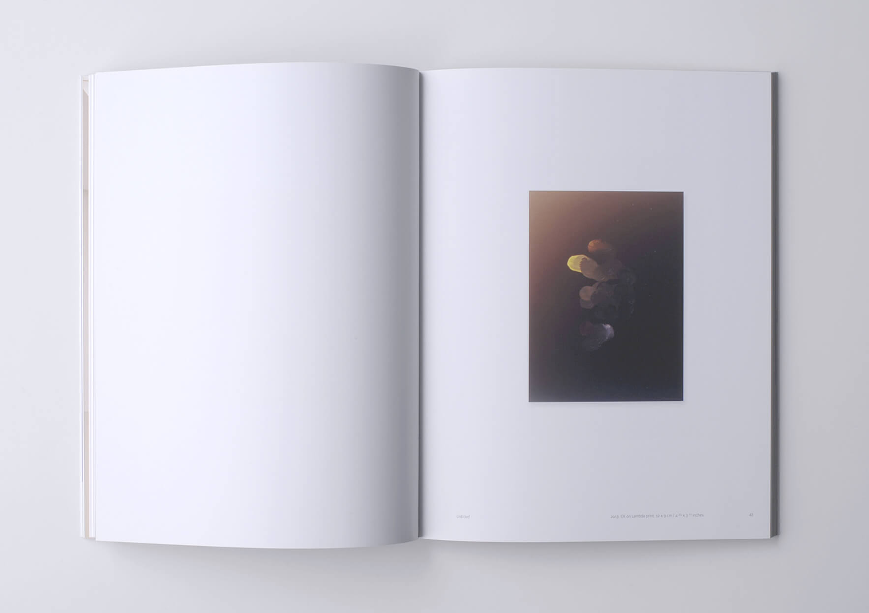| Pieter Vermeersch | ProjecteSD
