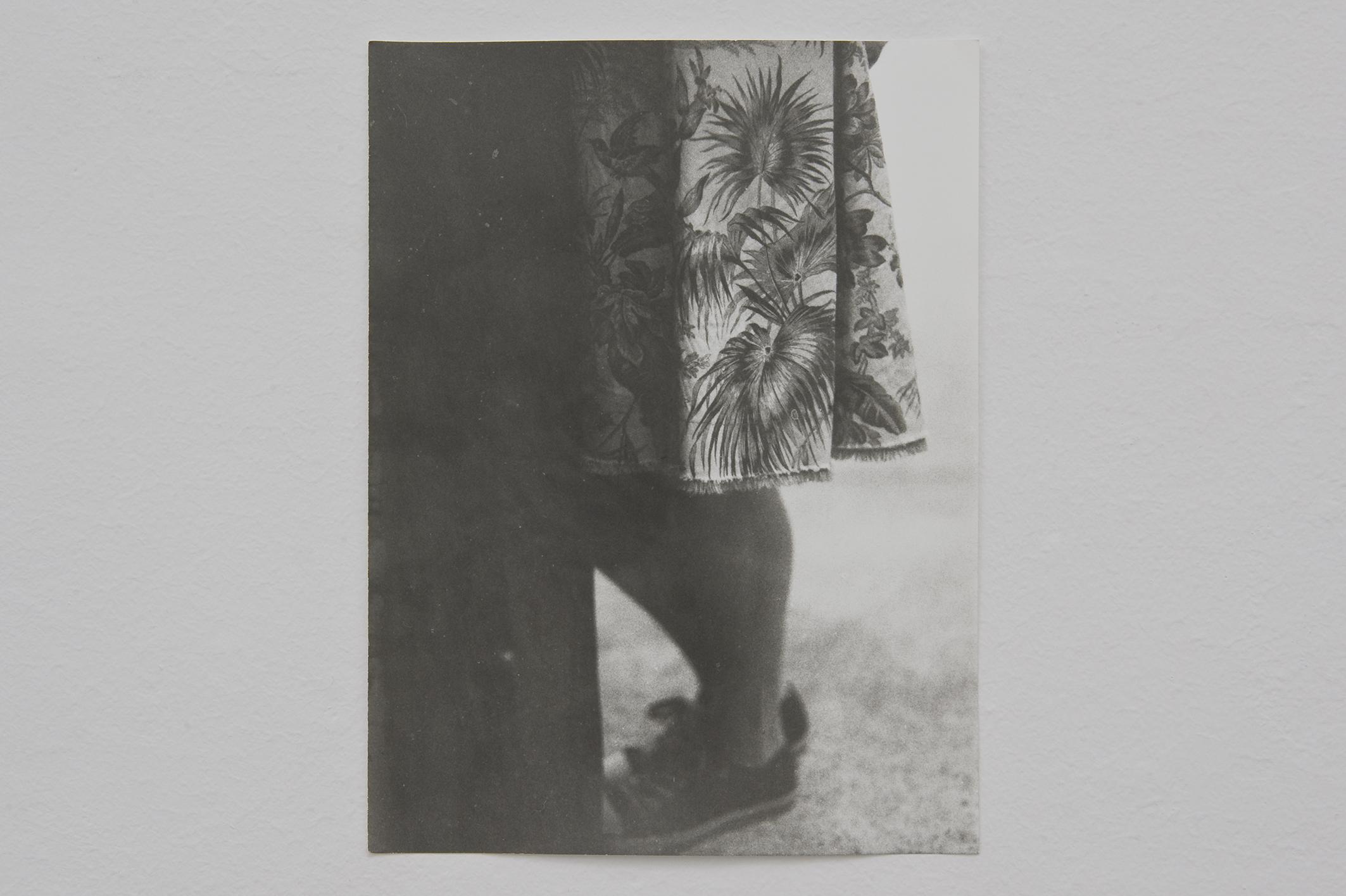 Untitled, 2014 | Jochen Lempert | ProjecteSD