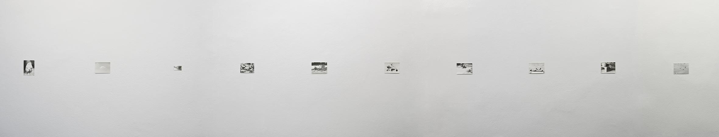 Lyren, 2013 | Jochen Lempert | ProjecteSD