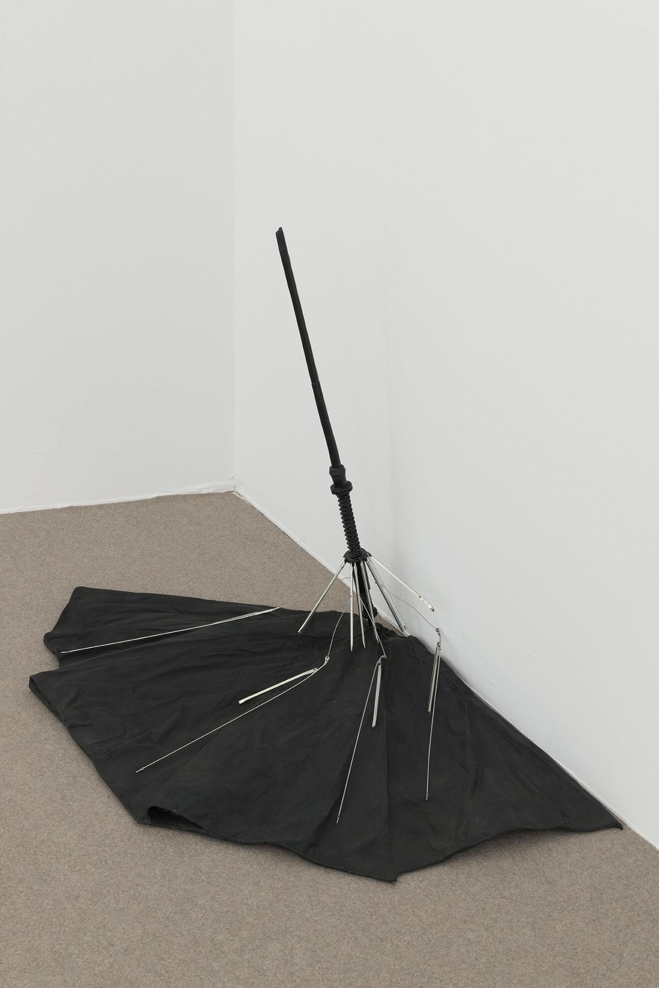 Precipitation (black), 2019 | America | ProjecteSD