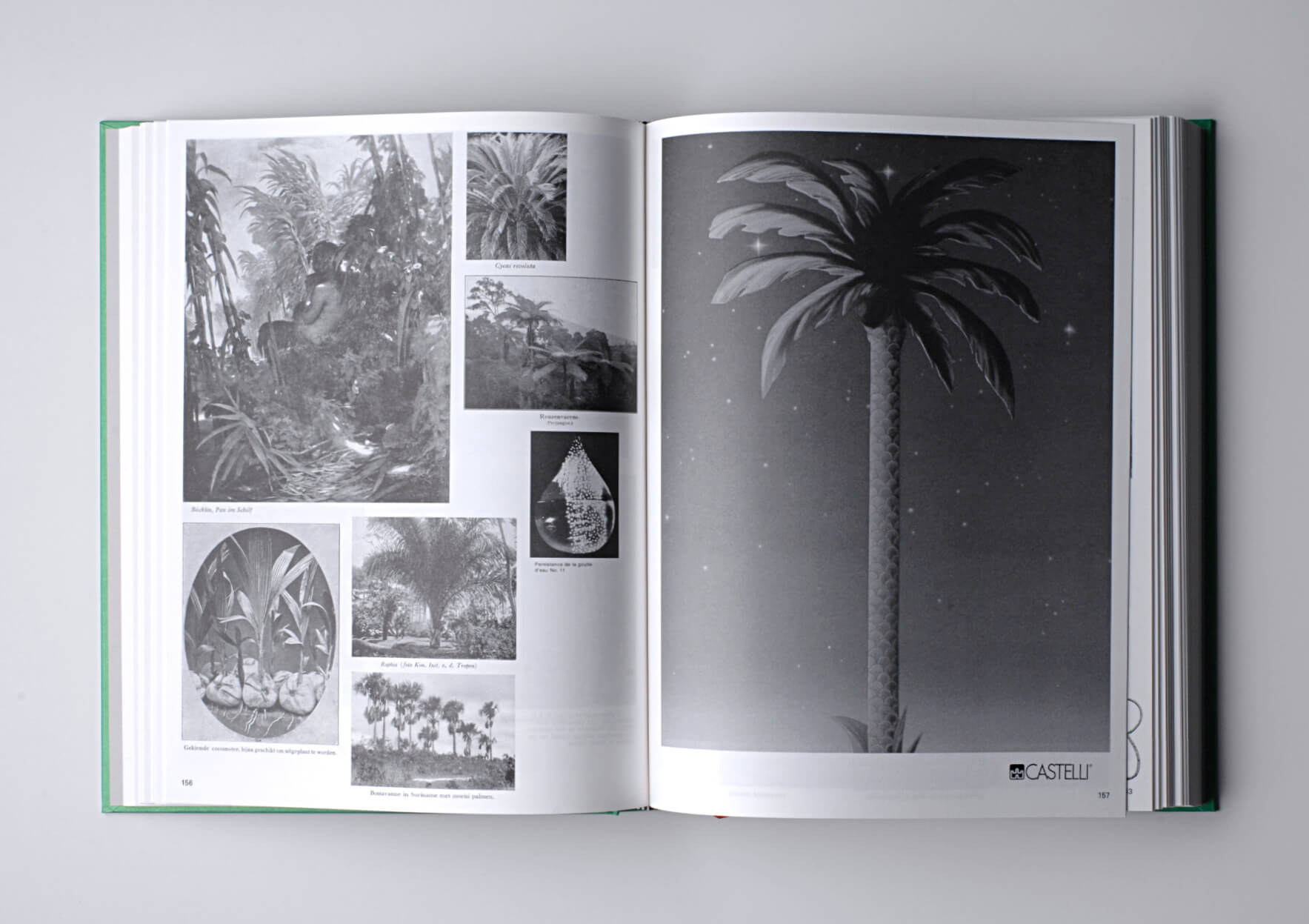 Batia Suter Parallel Encyclopedia 2, 2016/18 28,6 x 21,6 cm, 592 p. Ed. Roma Publications | Mother | ProjecteSD