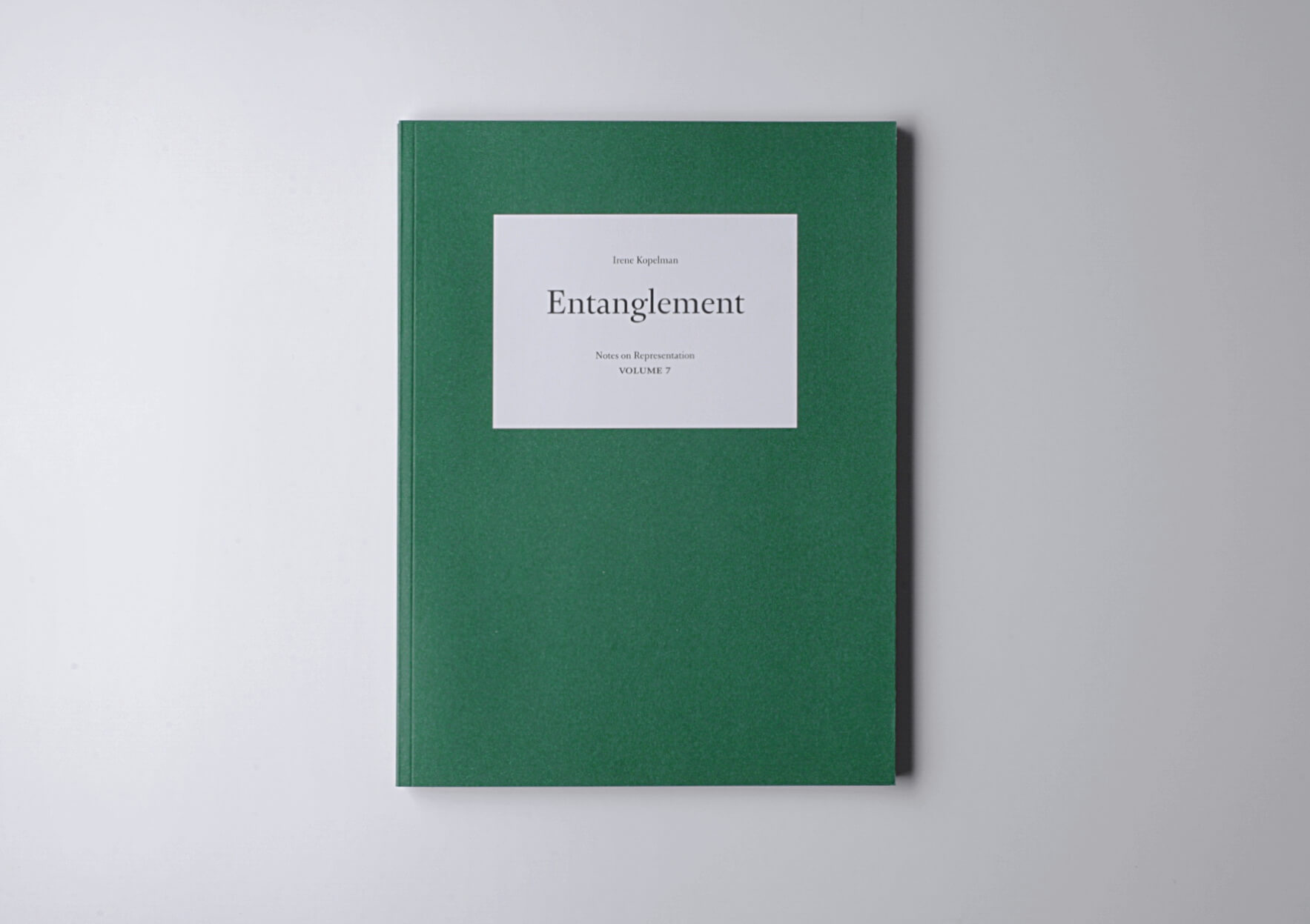 Irene Kopelman Entanglement. Notes on Representation V.7, 2015 28 x 21 cm, 152 p. Texts in English and Spanish. Ed. Roma Publications | Mother | ProjecteSD