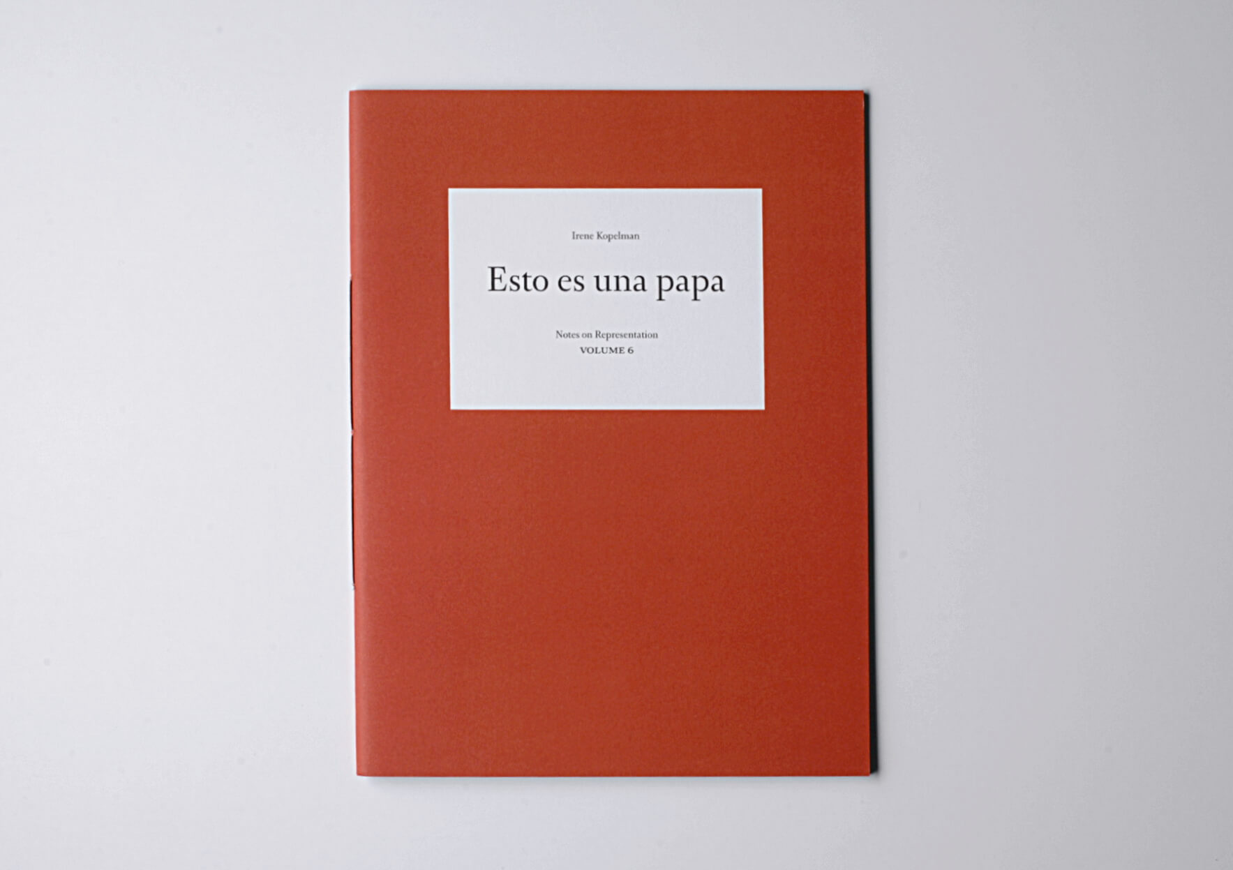 Irene Kopelman Esto es una papa. Notes on Representation V.6, 2015 28 x 21 cm, 48 p. Texts in English and Spanish. Ed. Roma Publications | Mother | ProjecteSD