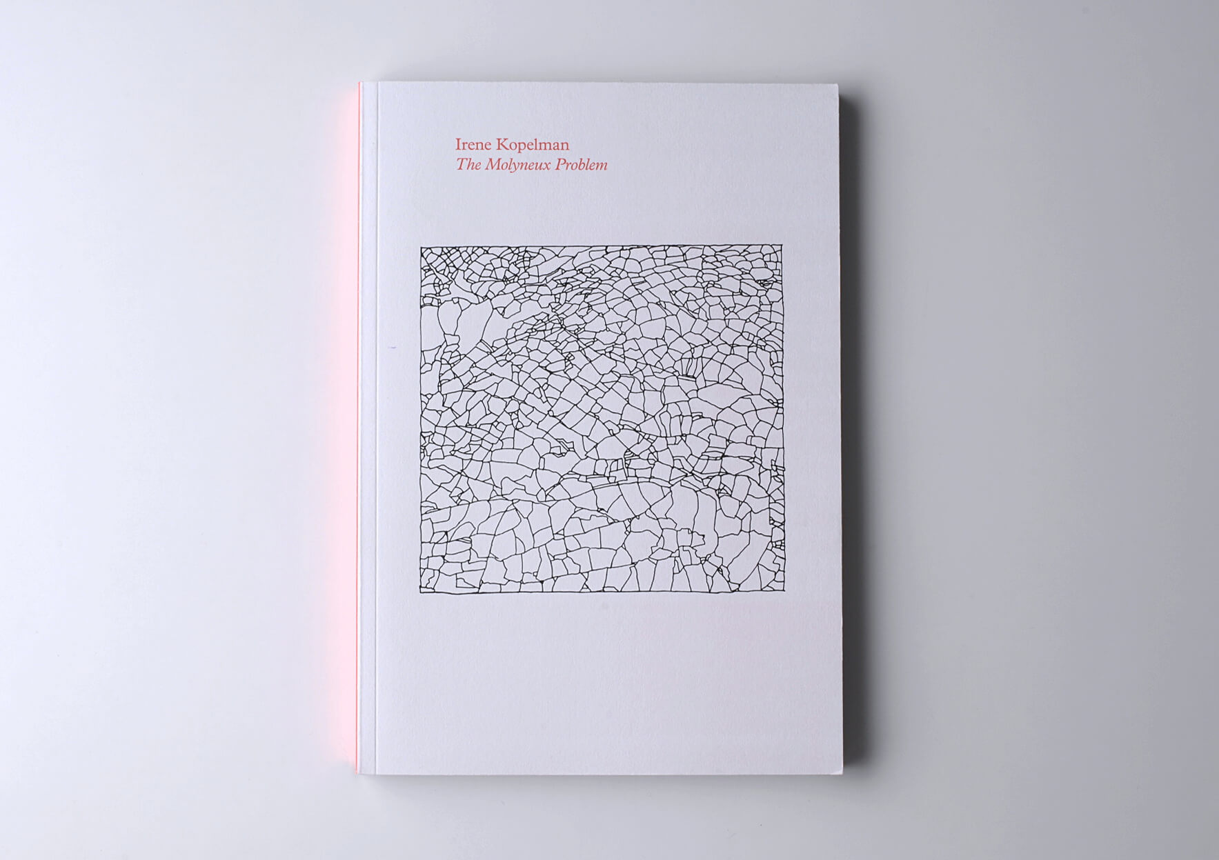 Irene Kopelman The Molyneux Problem, 2012 23 x 16,5 cm, 144 p. Texts in English. Ed. Roma Publications | Mother | ProjecteSD