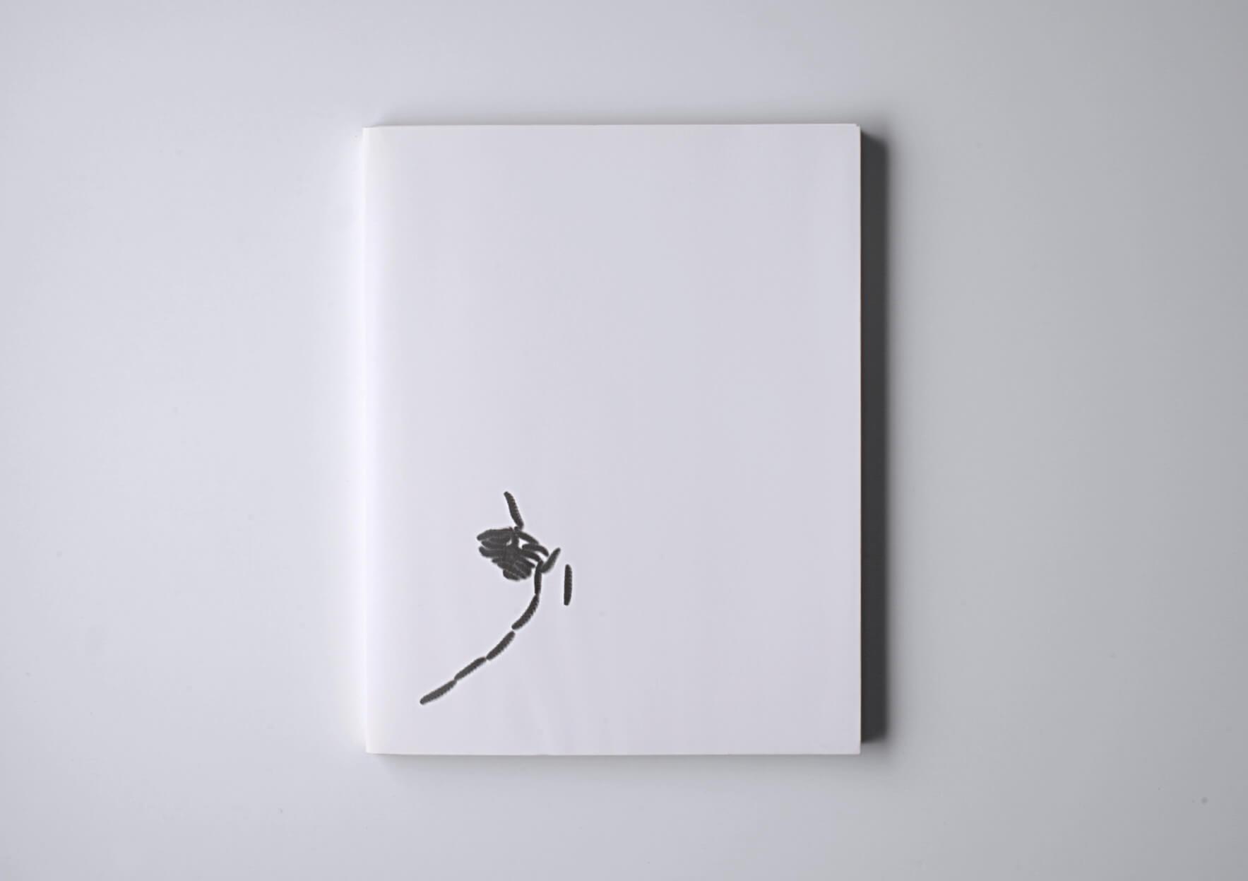 Rosemarie Trockel Jedes Tier ist ein Künstler, 1993 30,5 x 24 cm, 64 p. 1500 ex. First edition, signed by the artist. Ed. Galerie der Spiegel, Spiegelschrift n°5, Karl Gerstner, Köln | Mother | ProjecteSD