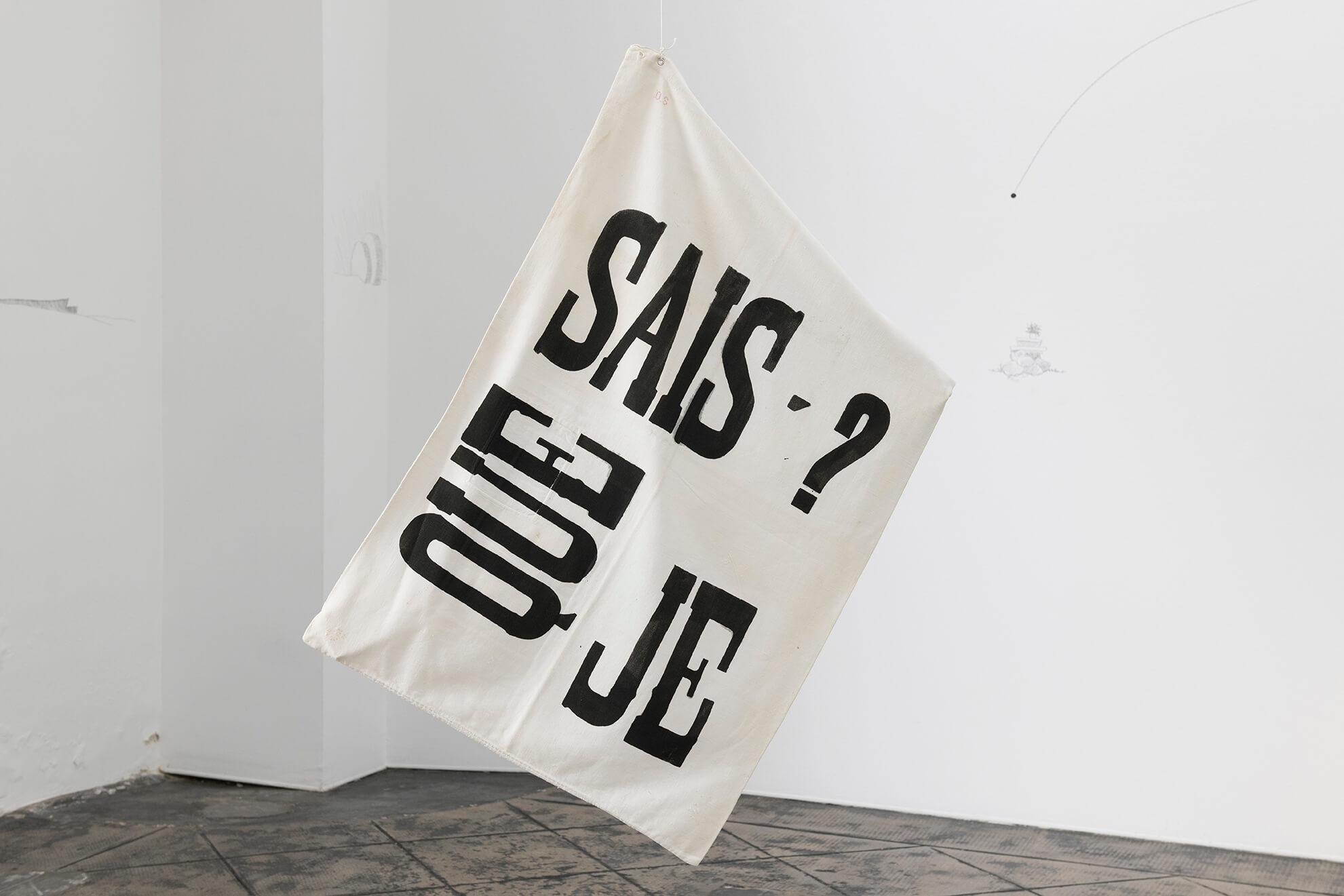 Que Sais-Je?, 2011 | Untitled | ProjecteSD