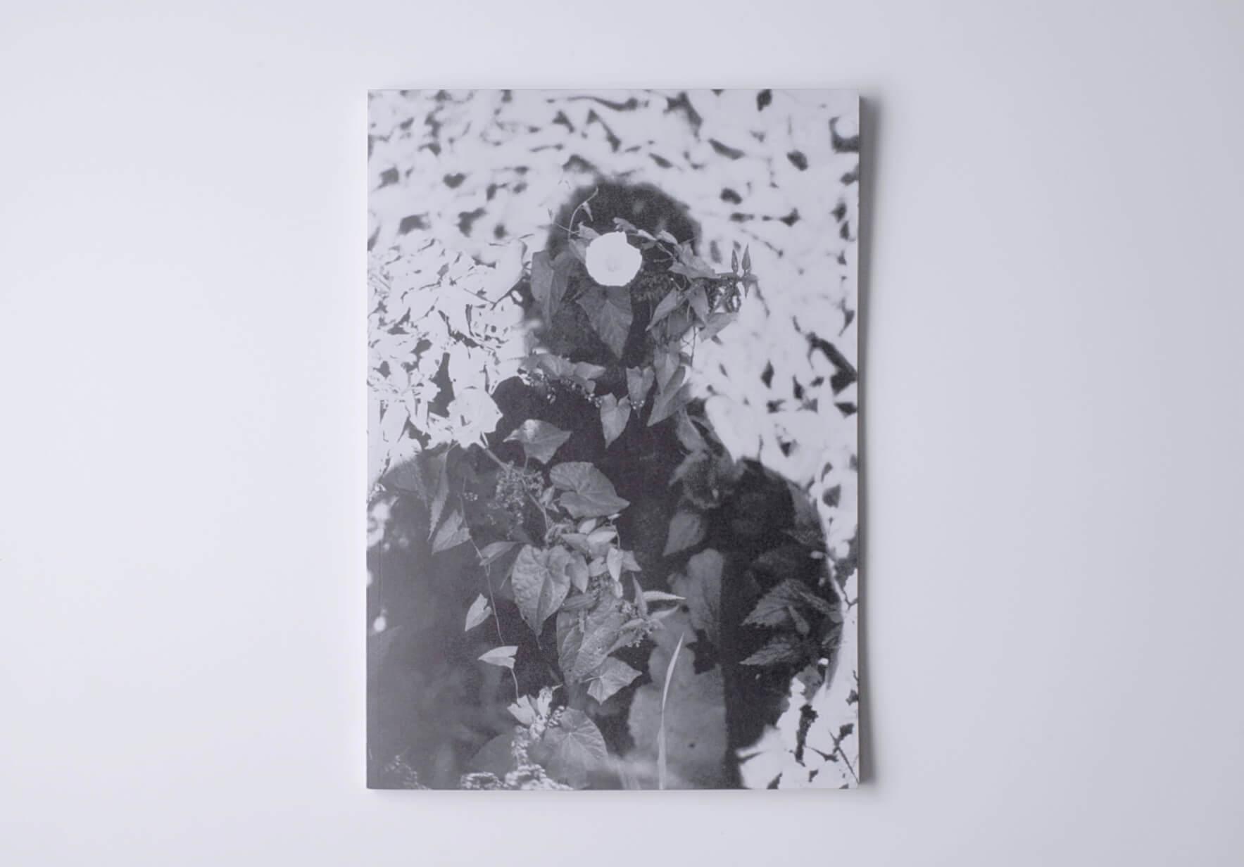 | Relación | ProjecteSD