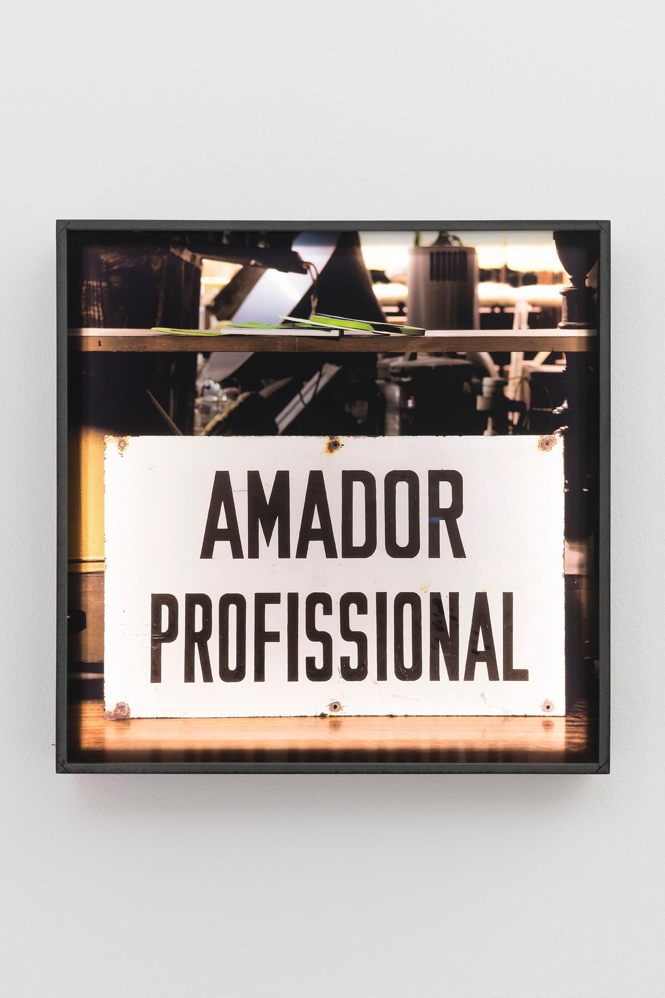 ANA JOTTA. Amador Profissional, 2020 | El Museu Imaginari / El Museo Imaginario / The Imaginary Museum | ProjecteSD