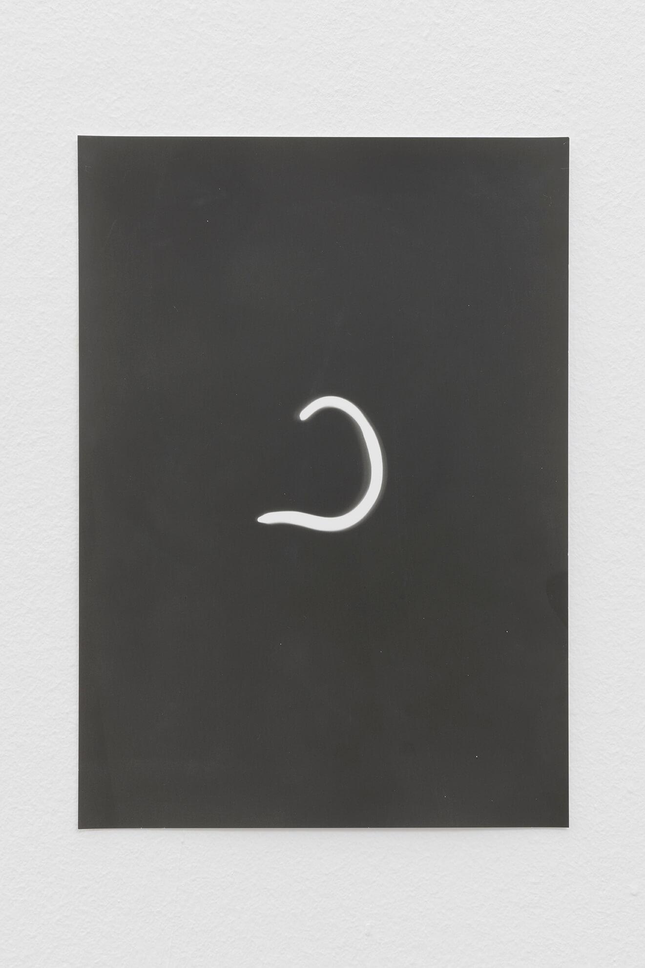 Earthworm, 2021 | JOCHEN LEMPERT: VISIBLE LIGHT | ProjecteSD