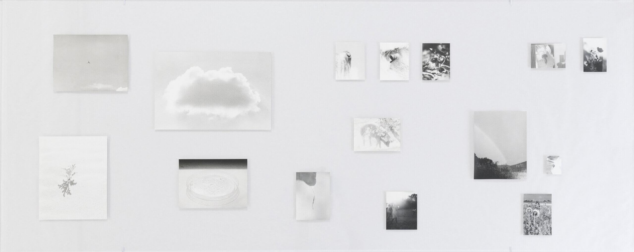 Visible Light (vitrine), 2021 | JOCHEN LEMPERT: VISIBLE LIGHT | ProjecteSD