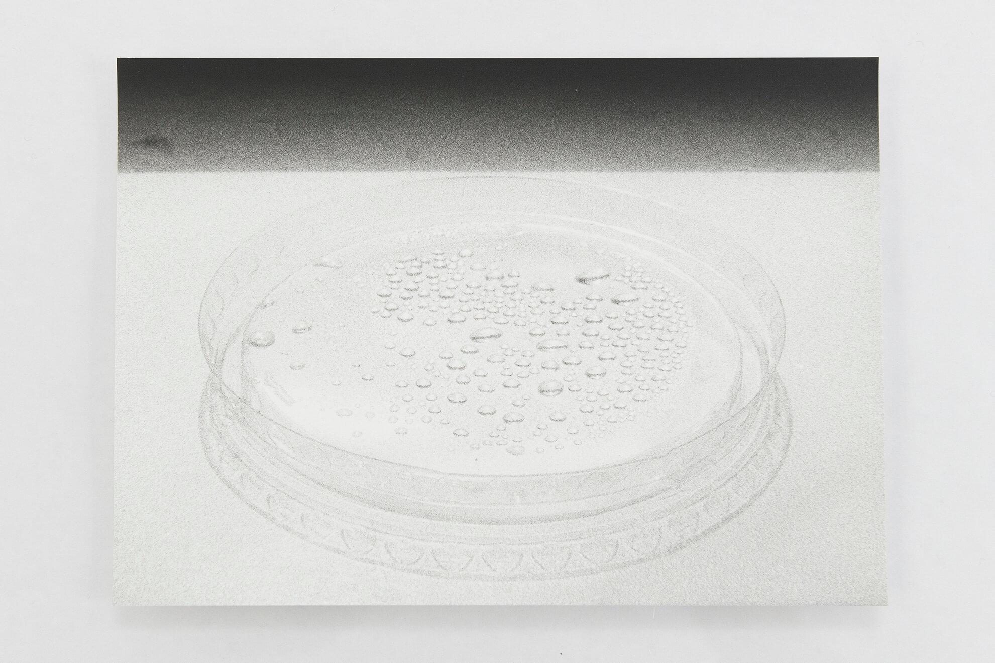 Visible Light (vitrine), 2021. (Detail) | JOCHEN LEMPERT: VISIBLE LIGHT | ProjecteSD